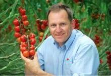 LED照明助力 英企西红柿冬季正常生产