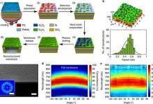 多功能双光子纳米结构