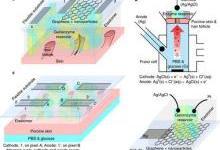 前沿研究成果:柔性物理或化学传感器