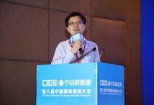 王澍:高性能储能调频电站解决方案
