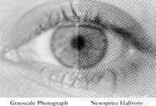 位图技术1小时内获得大脑的3D数据