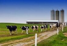 从农场到餐桌,物联网技术为食品供应保驾护航