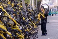 "被""道德风险""绊倒的共享单车"