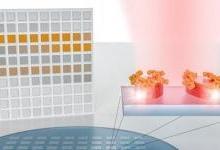 新型分子识别传感器破解红外光谱学难题