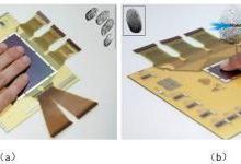 新型薄膜图像传感实现柔性薄膜指纹识别