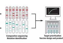 疫苗屡陷罗生门,AI能为疫苗做点什么?