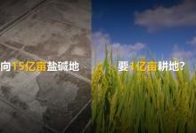 华为轮值董事长胡厚崑:出于云,胜于智