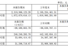 芯能科技上半年主营业务收入23965.08万