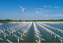 泗洪光伏发电应用领跑基地项目建设纪实