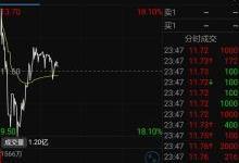 蔚来汽车股价涨后暴跌两度暂停交易