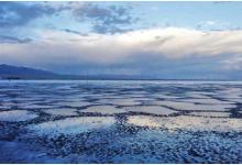 威华股份坚定转型,锂盐业务贡献利润