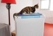 安美瑞 X8空气净化器宠物版