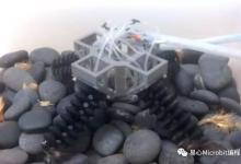 能走复杂地形的软性机器人