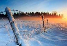 """28年来最强""""寒冬"""",该以什么样的姿态逆寒风而行?"""