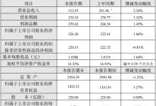 长江电力2018年净利润226.30亿元