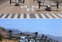 """航母艦載""""魚鷹""""部隊!美海軍組建CMV-22B""""魚鷹""""艦載運輸聯隊"""
