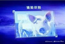 """京东、温氏、扬翔都在布局的智能养猪,AI真的能赋能""""二师兄?#20445;?/></a> <a class="""
