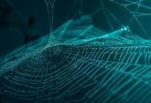 芬兰研发成功可替代塑料新材料:人造合成蜘蛛丝 能降解更环保