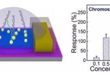 北京大学研发新型生物传感器
