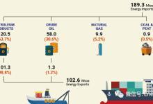 图表分析:新加坡能源统计2018