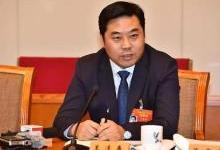 王连春:推动氢燃料汽车发展