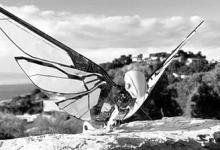 跟蝴蝶一样扇动翅膀飞行的无人机