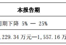 苏大维格一季度净利润预降5%至25%