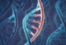 RNA与DNA曾是一体?生命起源论或被颠覆