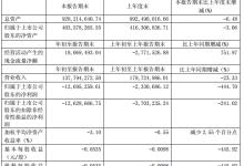 凤凰光学一季度亏损扩至1269.53万元