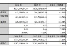华灿光电/洲明科技/珈伟新能2018年财报一览