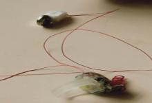 新型智能指环传感器和微功耗数据传输