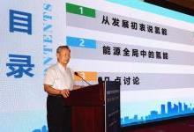 """""""问诊""""氢能:可持续性比经济性更重要"""