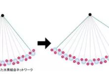 电解质膜研究新进展:亚纳米水性片材实现氢离子超快传输