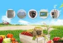 石墨烯传感器在农业领域让管理愈加智能化