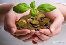 棕榈股份:引入国资后为何资金仍紧张?