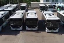 山东首批氢燃料电池公交车正式批量运营