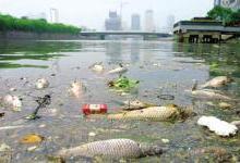 离子交换树脂对污染如何进行处理?