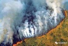 亚马逊雨林浴火,四季不再更替?