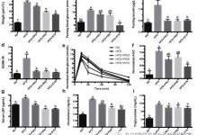 合生元对肥胖小鼠代谢紊乱的调节作用