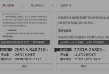 汉能水电站51%股权拍卖为何被撤回?