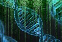 AI加速計算推動醫療個體化轉型