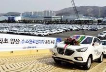 2019韩国氢燃料汽车销量跃居全球第一