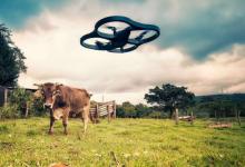 巨头们AI的角力战正向农村渗透!
