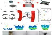科学家研发出软体机器人:薄如蝉翼 会悬浮